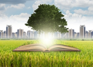 Tree growing from the old books over the grass and cityscape bac