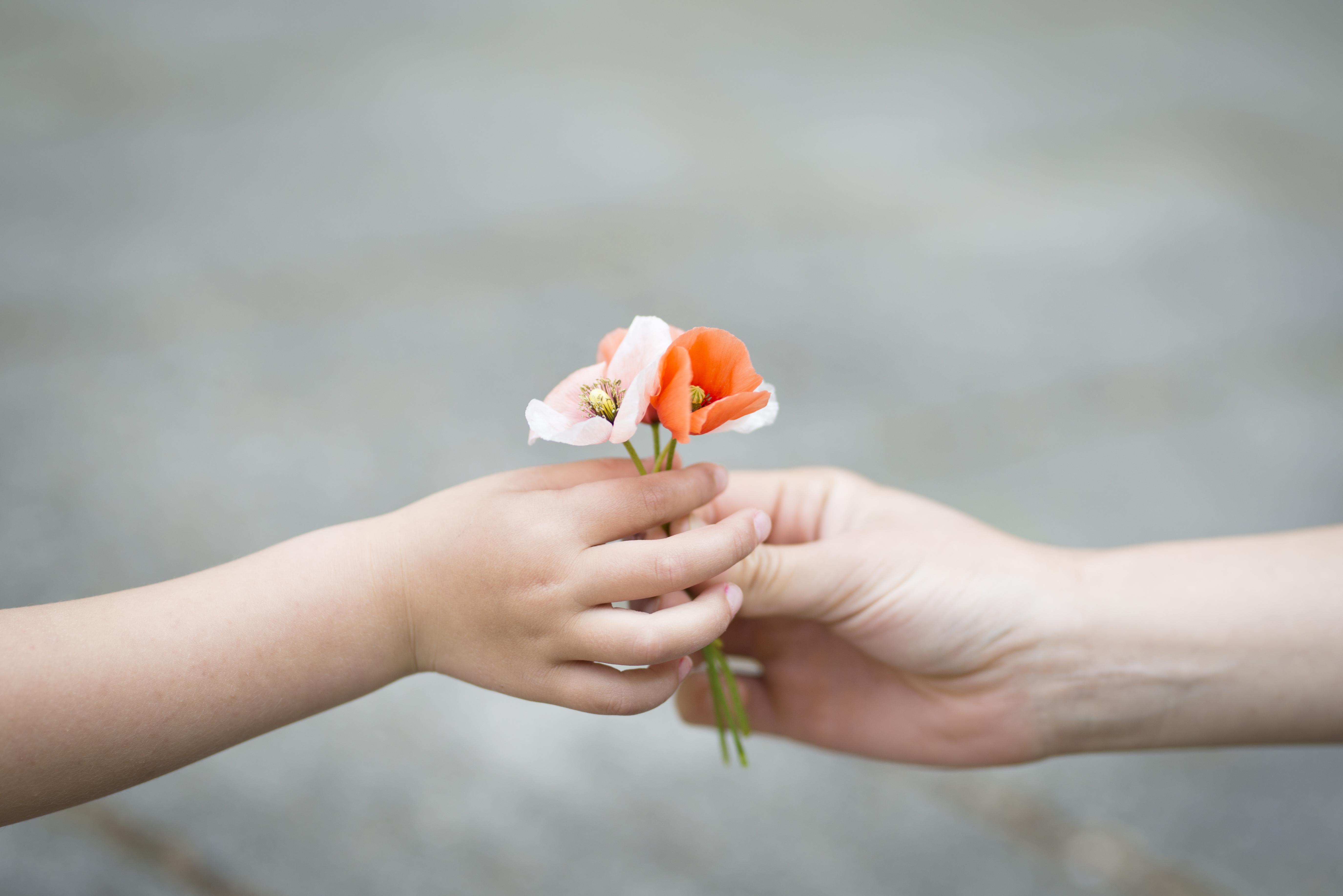 小さな花を手渡す親子